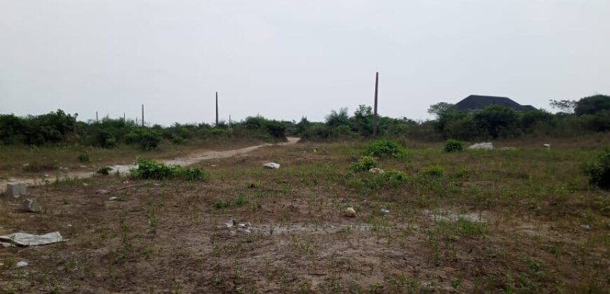 Land in Palmsprings Estate, Bogije
