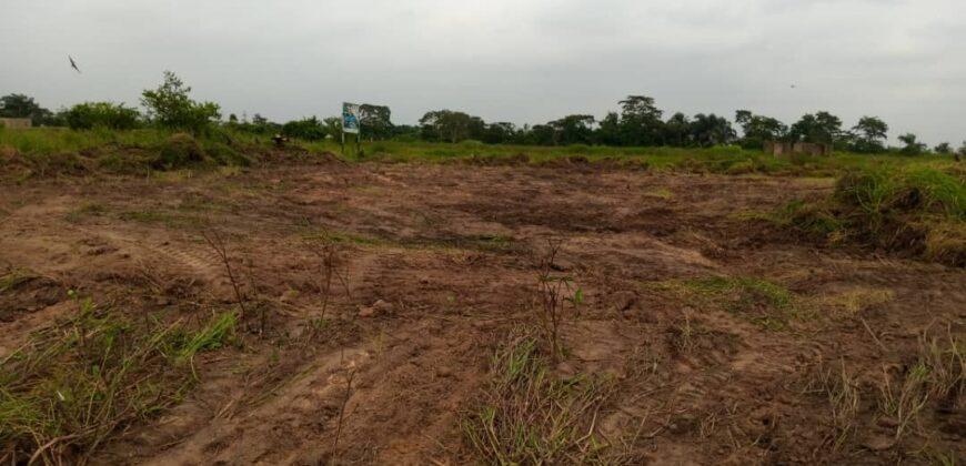 DRY LANDS FOR SALE AT KINSTON ESTATE, IBAFO