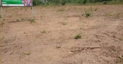 DRY LANDS AT PRIMEHOOD ESTATE IBADAN