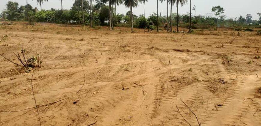 500SQM LANDS IN PRIMEHOOD ESTATE IBADAN