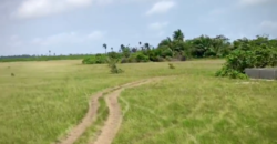 Half plot of Land at Ibeju Lekki