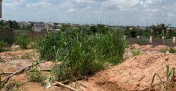 GOOD LANDS MEASURING 300SQM IN TREASURE HILLTOP ESTATE, ALAGBADO