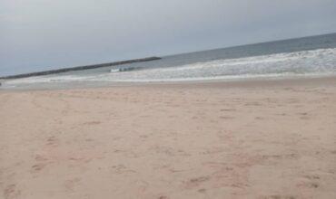 GENUINE BEACH FRONT PLOTS OF LAND IN D-SHA BEACH ESTATE AJAH
