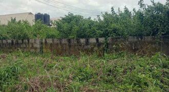 GOOD LANDS MEASURING 450SQM IN ARAGA LUXURY ESTATE, EPE.*