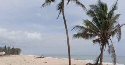 CHEAPEST OCEAN VIEW LANDS IN VOPNU CITY