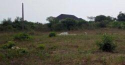 GOOD LANDS MEASURING 300SQM IN PALMSPRINGS ESTATE BOGIJE.