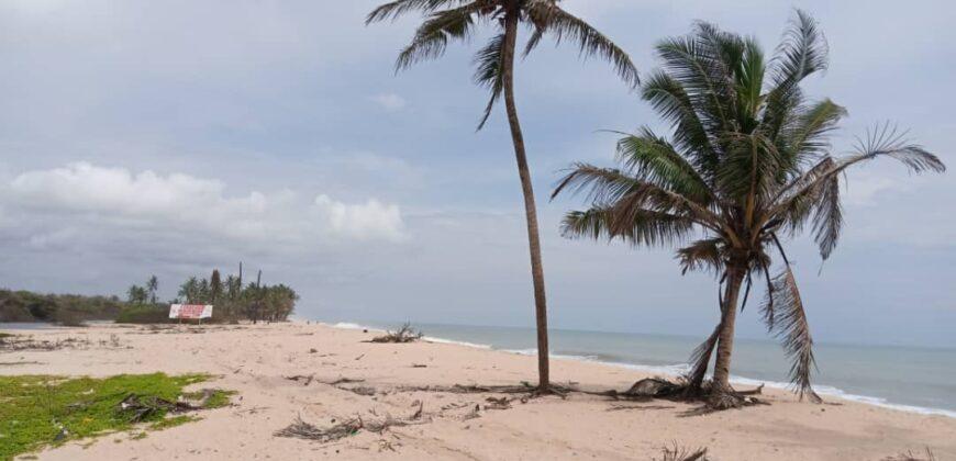 CHEAP OCEAN VIEW LANDS AT VOPNU CITY OCEAN VIEW