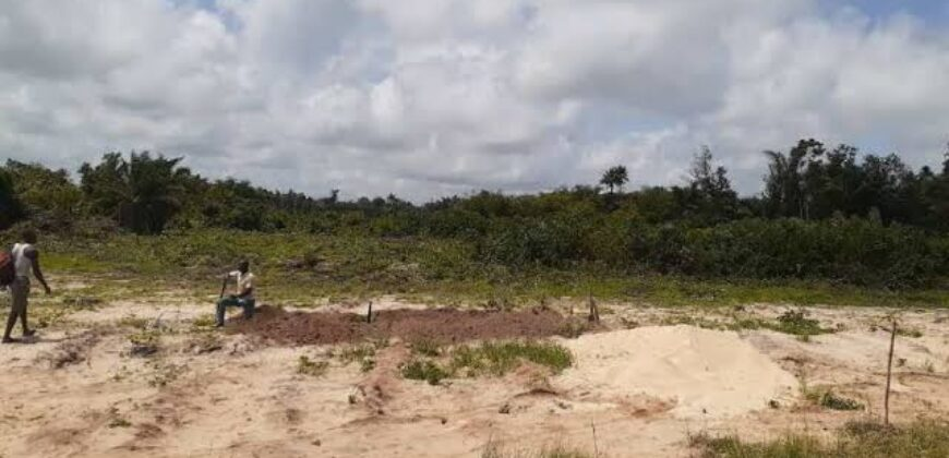 600sqm PLOTS OF LAND IN SWAN PARK ESTATE IBEJU-LEKKI