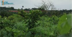 DRY LANDS AT HAVEN CITY EPE