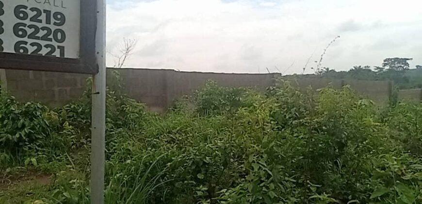 600SQM LANDS IN HIGHBRIDGE WOODLAND, EPE
