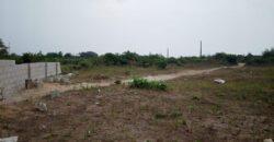 GENUINE DRY LANDS IN PALMSPRINGS ESTATE BOGIJE