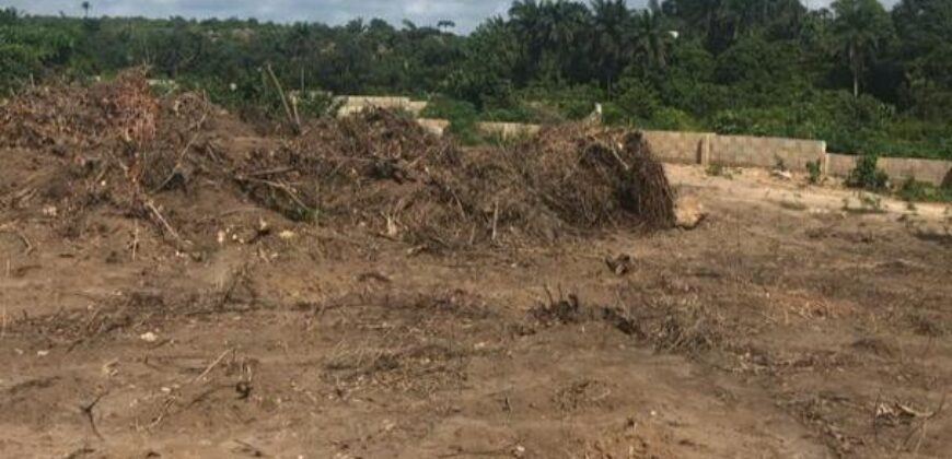 BUY AND BUILD 600SQM DRY LANDS IN DWELL ENCORE