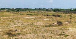 PLOTS OF LAND IN SIGNUM ESTATE